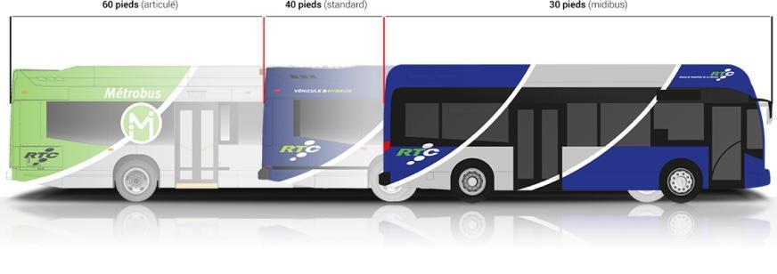 Dimensions du Midibus