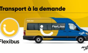 Transport à la demande, Flexibus